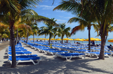 Beach lounges, palm trees, and yellow beach umbrellas at a resort on a tropical island leased by a cruise line off the coast of Belize.