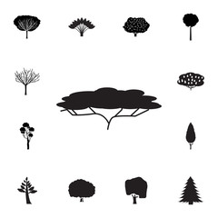 tree of kiwi icon. Set of silhouette of tree icons. Web Icons Premium quality graphic design. Signs, outline symbols collection, simple icons for websites, web design, mobile app