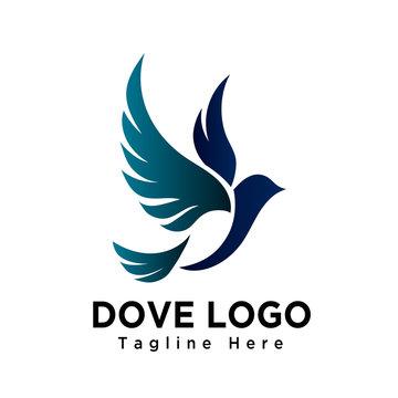 Art dove bird flying logo