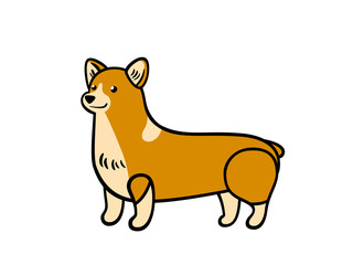 Vector corgi in cartoon style