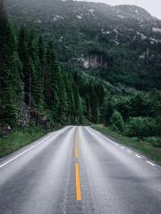 Freie Straße in Nordeuropa mit Blick auf Wald und Berg
