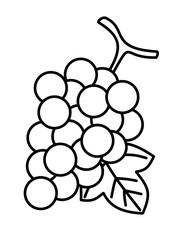 ぶどう葉(線画)