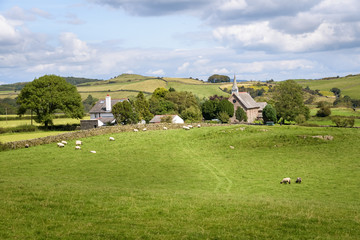 Sheep grazing in green landscape with small village and church England