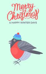 Merry Christmas Bullfinch Vector Illustration