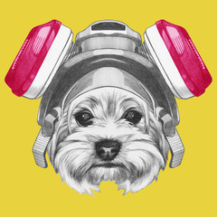Portrait of Yorkshire Terrier with gas mask, hand-drawn illustration