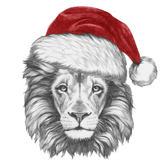 Portrait of Lion with santa hat. Hand-drawn illustration.