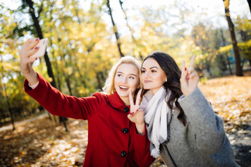 Two beautiful young woman taking selfie in autumn day park