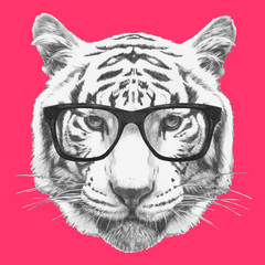 Portrait of Tiger with glasses. Hand-drawn illustration.