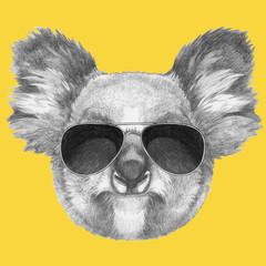 Portrait of Koala with sunglasses, hand-drawn illustration