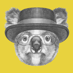 Portrait of Koala with hat, hand-drawn illustration