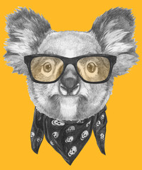 Portrait of Koala with glasses and scarf, hand-drawn illustration