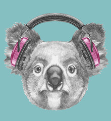 Portrait of Koala with headphones, hand-drawn illustration