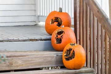 Halloween Pumpkins 20 Days Later