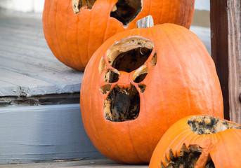 Halloween Pumpkins 20 Days Later 2