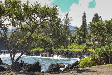 Lava rock coast on Road to Hana, Maui, Hawaii
