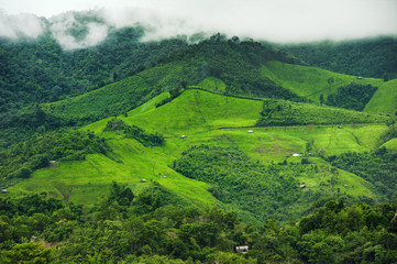 Beautiful mountains In the province of Nan It is beautiful, fresh, green and full of fog on the top of the hill with paddy fields full of rice in the rain season, tourist attraction in thailand