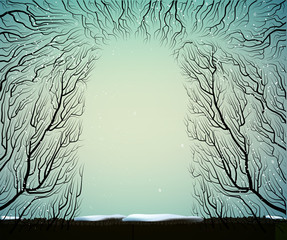way to the deep fairy frosty winter forest, shadows, branches silhouette, blue blue fairy