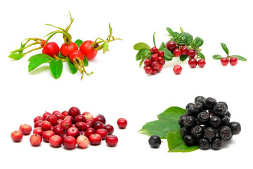different berries isolated on white background
