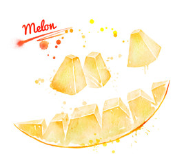 Watercolor illustration of piece of melon