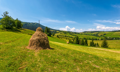 haystack on a grassy rural field in mountains. beautiful countryside landscape with forested hills on a fine summer day
