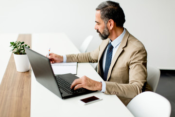 Handsome middle-aged businessman working on laptop in office