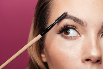 Cropped photo of young lady paint eyebrow with brush isolated