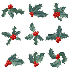Christmas holly berry icon collection