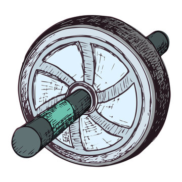 Ab roller wheel, cartoon illustration of gym equipment for home exercise. Vector