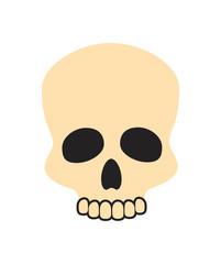 Closeup of Beige Skull on Vector Illustration