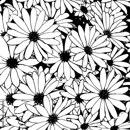 Hand Drawn Black And White Daisy Flowers As A Background Vector