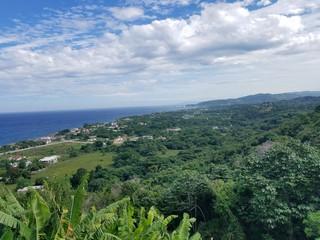 Verdant, Jamaican, Bluffs