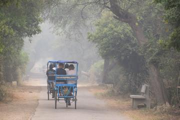 Rickshaws in Bharatpur Bird Sanctuary