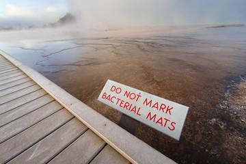 Bacterial mats at Grand Prismatic Spring, Yellowstone National Park