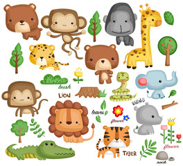 Jungle Vector Set