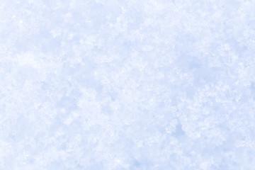 Snow texture close up on a sun.