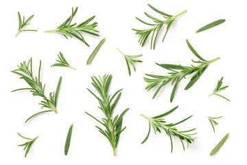 Acrylic Prints Aromatische Rosemary Isolated on White Background