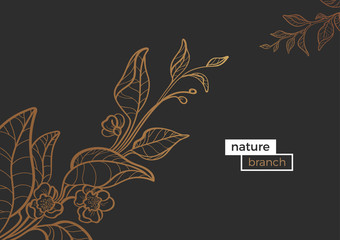 Vector template of golden art line branches. Nature vintage illustration