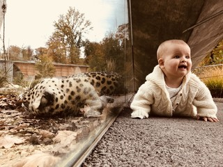 Baby neben Raubtier