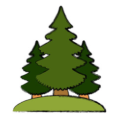 Trees pines isolated icon vector illustration graphic design