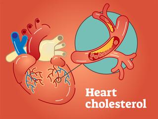 Heart cholesterol concept vector illustration