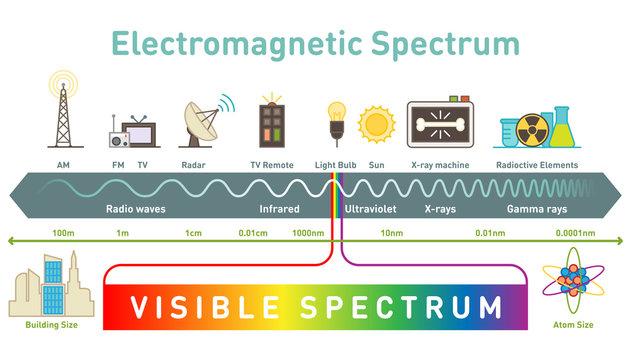 Electromagnetic spectrum diagram vector illustration