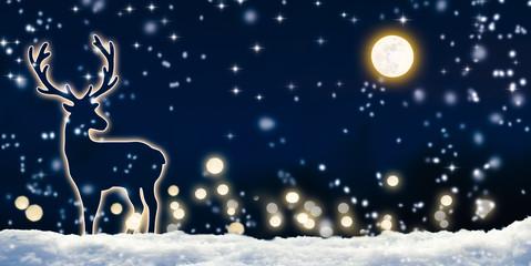 schnee, nachthimmel, vollmond, hirsch
