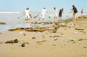 People cleaning polluted beach. Bali