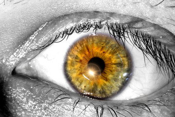 Human eye with a sunlight near the pupil macro  close-up texture background
