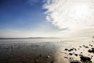 Landscape of Shenzhen Bay in China