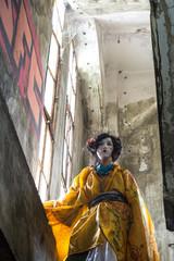 geisha, female, face, decoration, hair, japan, oriental, makeup, kimono, japanese, culture, asian, asia, beauty, beautiful, costume, glamour, history, kansai, gion, colorful, attraction, attractive, c