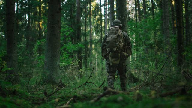 Shot of a Fully Equipped Soldier Moving Further in the Dense Forest. He's on the Reconnaisance Military Mission. Low Angle Footage.
