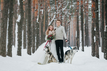 Beautiful bride and groom with two siberian husky are posed on background of snowy forest. Artwork