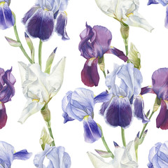 Floral seamless pattern with watercolor irises