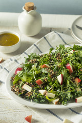 Raw Healthy Organic Kale and Apple Salad